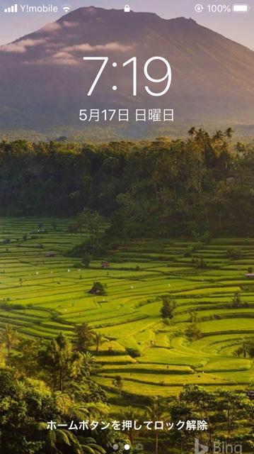 【Bing】高画質の美しい画像が、スマホの壁紙に使えます!やり方を紹介します。