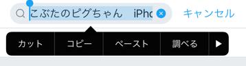 【iPhone】文字選択をカンタンに解除する方法。細かいカーソルの移動にも便利!